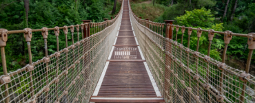 Image of suspension bridge symbolizing transition