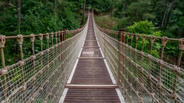 Image of suspension bridge symbolizing transition
